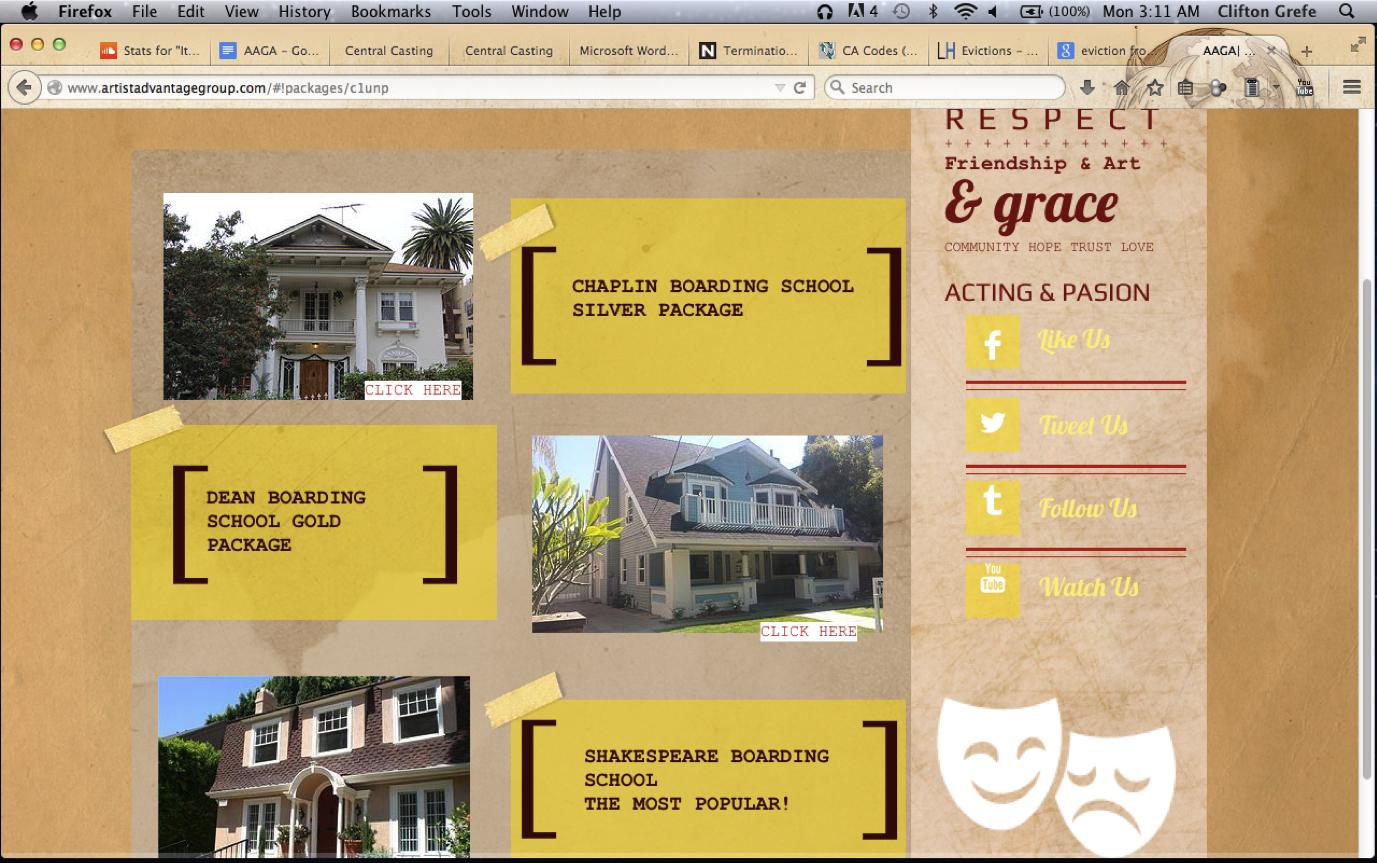 Artist Advantage Group website1