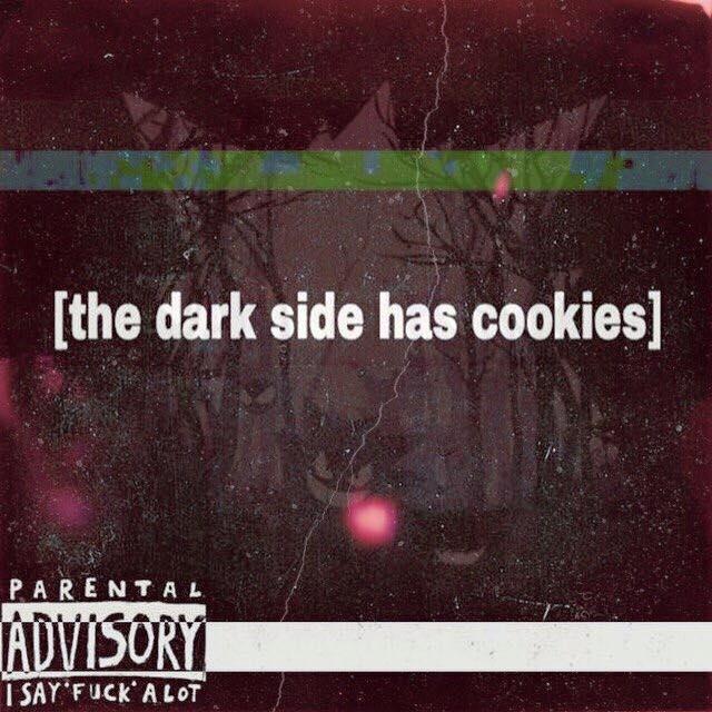 YL 64 - the dark side has cookies LP cover art