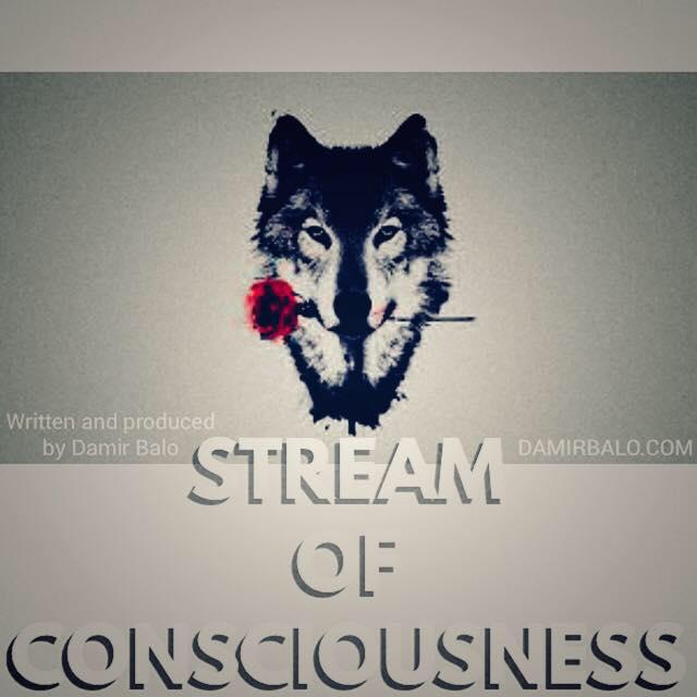 Damir Balo - Sream of Consciousness cover art