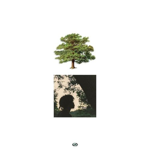 Trapo - Shade Trees album cover art basement made